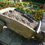 ベランダ菜園におすすめのプランターサイズと初心者向けの野菜